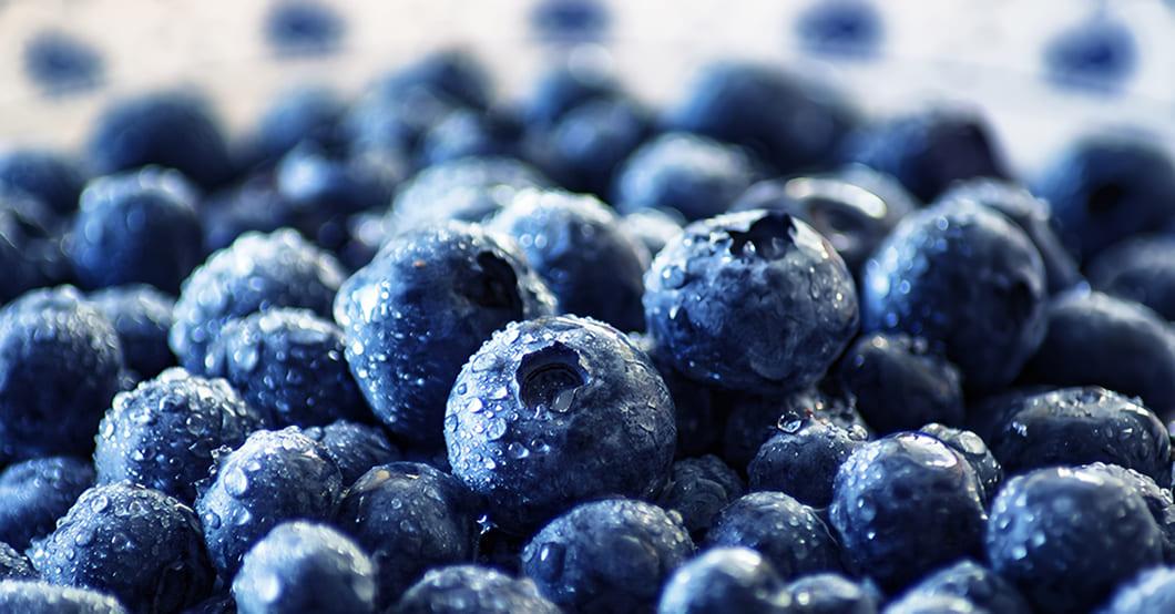 Blåbär är ett riktigt superbär och faktum är att man länge har förstått att blåbäret har många hälsosamma effekter