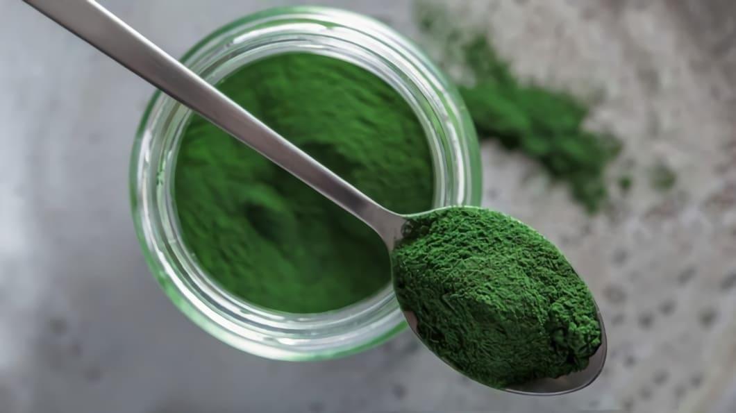 Chlorella är en mycket näringsrik alg och mer än halva algens innehåll består av protein