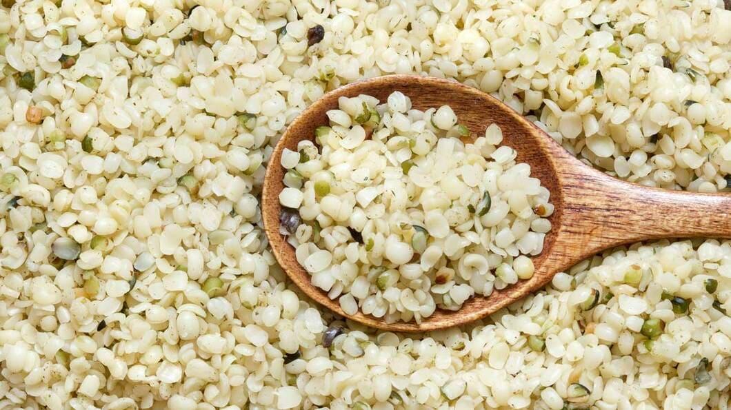 Det är mycket vanligt att man använder sig av hampafrön för att göra proteinpulver